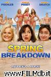 poster del film spring breakdown