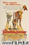 poster del film the incredible journey