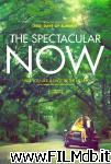 poster del film the spectacular now