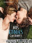 poster del film the fault in our stars