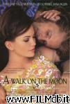 poster del film a walk on the moon - complice la luna