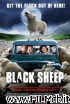 poster del film black sheep