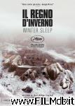 poster del film Il regno d'inverno - Winter Sleep